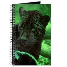 Black Jaguar Journal