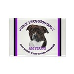 American Staffordshire Rectangle Magnet