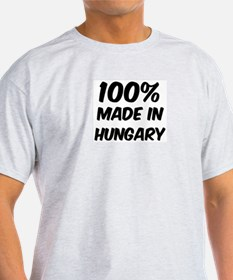 100 Percent Hungary Ash Grey T-Shirt