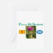 Flower Of Scotland(2) Greeting Cards (Pk of 10