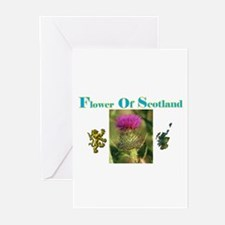 Flower Of Scotland(1) Greeting Cards (Pk of 10