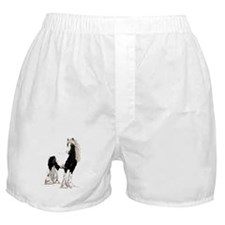 Gypsy Cob Boxer Shorts
