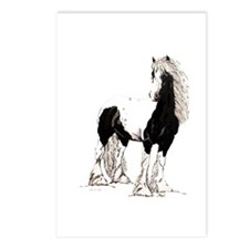 Gypsy Cob Postcards (Package of 8)