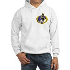 DUI - 101st Airborne Division Hoodie Sweatshirt