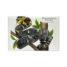 Mangrove Snake Rectangle Magnet
