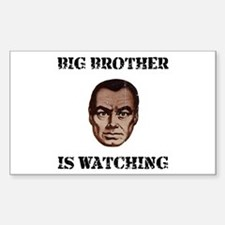 Big Brother Watching Decal