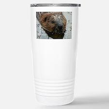Beaver  swimming  Travel Mug