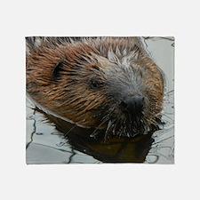 Beaver  swimming  Throw Blanket