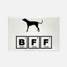 American English Coonhound Rectangle Magnet