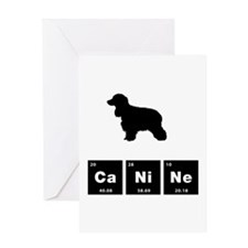 American Water Spaniel Greeting Card