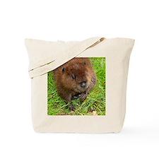 Sweet Baby Beaver Tote Bag