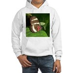Butterfly pic Hooded Sweatshirt