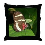 Butterfly pic Throw Pillow