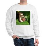Butterfly pic Sweatshirt