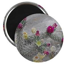 Desert Flower Magnet