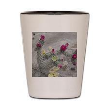 Desert Flower Shot Glass