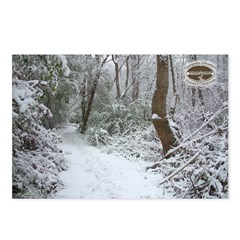 Chesapeake Arboretum 01 06 Postcards (Package o