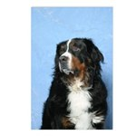 Berner Postcards (Package of 8)
