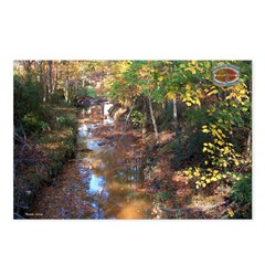 Chesapeake Arboretum 10 06 Postcards (Package o