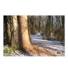 Chesapeake Arboretum 02 07 Postcards (Package o