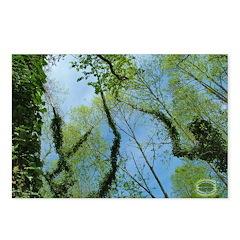 Chesapeake Arboretum 04 07 Postcards (Package o