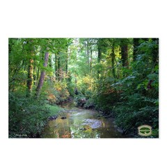 Chesapeake Arboretum 09 07 Postcards (Package o