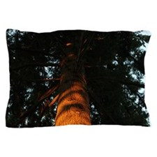 Tree at sunset pillow case