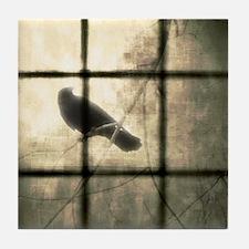 The Window Tile Coaster