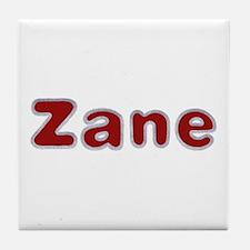 Zane Santa Fur Tile Coaster