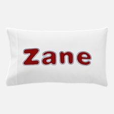 Zane Santa Fur Pillow Case