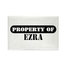 Property of Ezra Rectangle Magnet