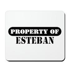 Property of Esteban Mousepad