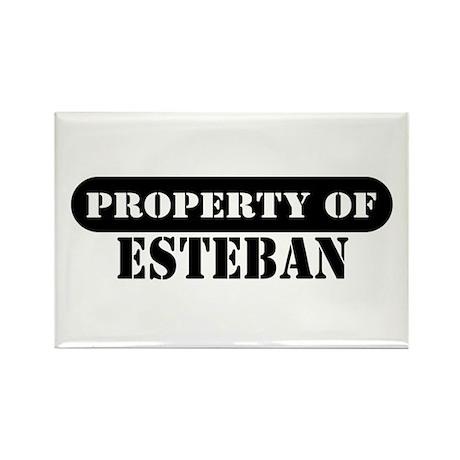 Property of Esteban Rectangle Magnet (10 pack)