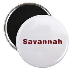 Savannah Santa Fur Round Magnet