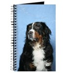 Berner Journal