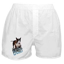 """boss """"bullie"""" Boxer Shorts"""
