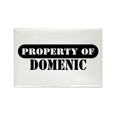 Property of Domenic Rectangle Magnet