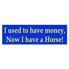 I used to have money Bumper Bumper Sticker
