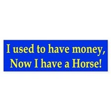 I used to have money Bumper Car Sticker
