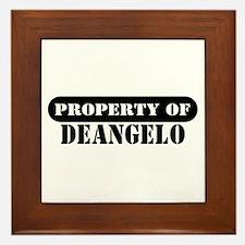 Property of Deangelo Framed Tile