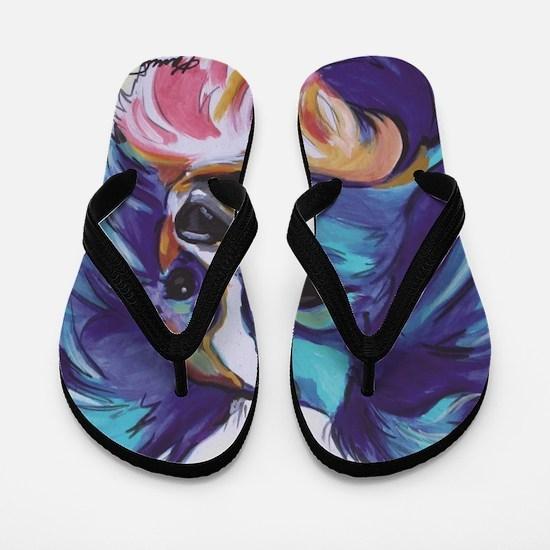Papillon - Gizmo Flip Flops