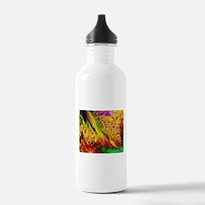 Frack31 Water Bottle