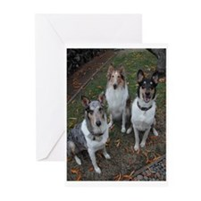 Fun Collie  Greeting Cards (Pk of 10)