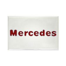 Mercedes Santa Fur Rectangle Magnet 10 Pack