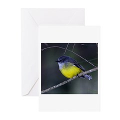 Yellow Robin Greeting Cards (Pk of 10)