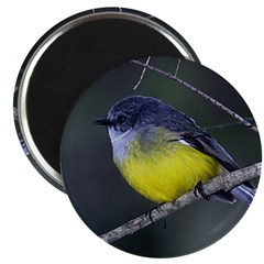 Yellow Robin Magnet