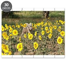 2014 MHWR Calendar Puzzle