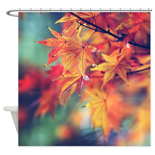 Fall Leaves Shower Curtain By SylviaCookPhotography