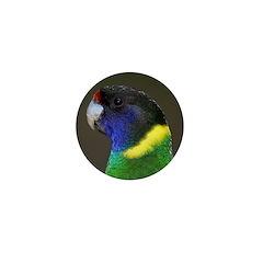 Parrot Mini Button