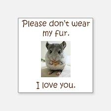 Chinchilla No Fur Sticker
